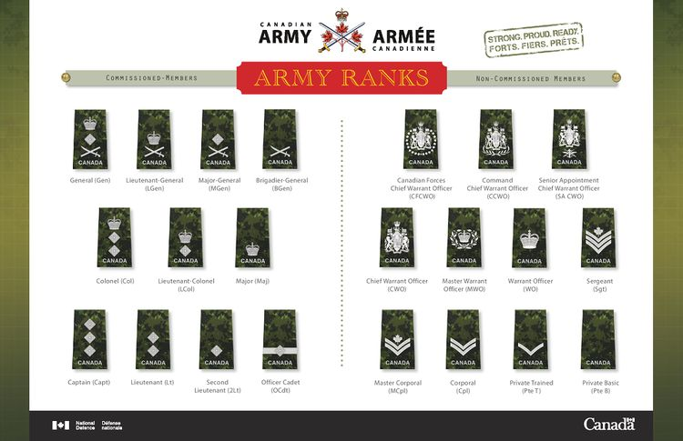 Canadian Army Ranks 08 Dec 2014.jpg